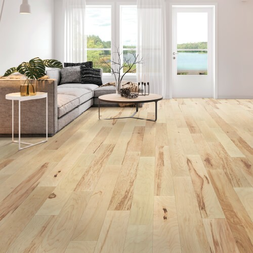 Sea view from window | Piedmont Floors