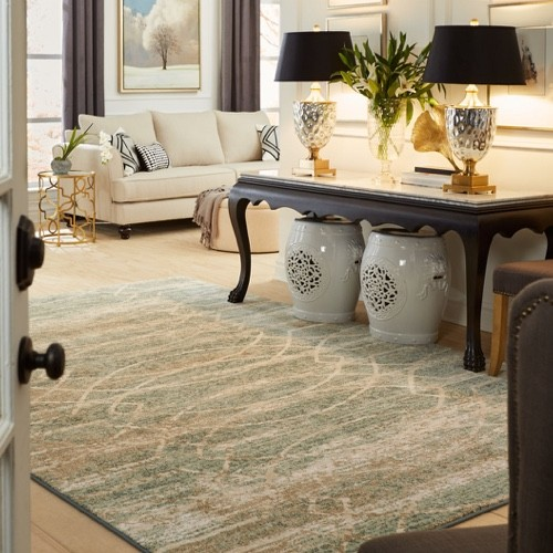 Karastan Area Rug | Piedmont Floors