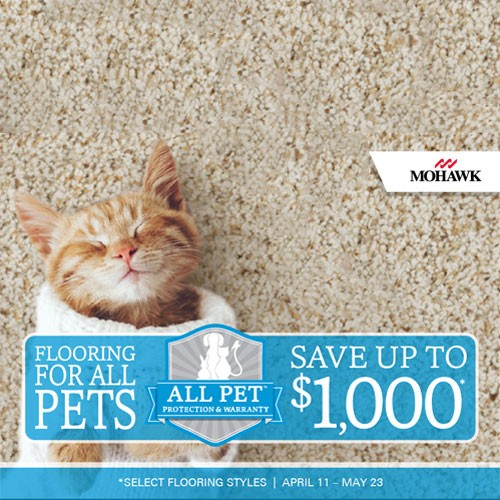 Pet friendly Carpet | Piedmont Floors
