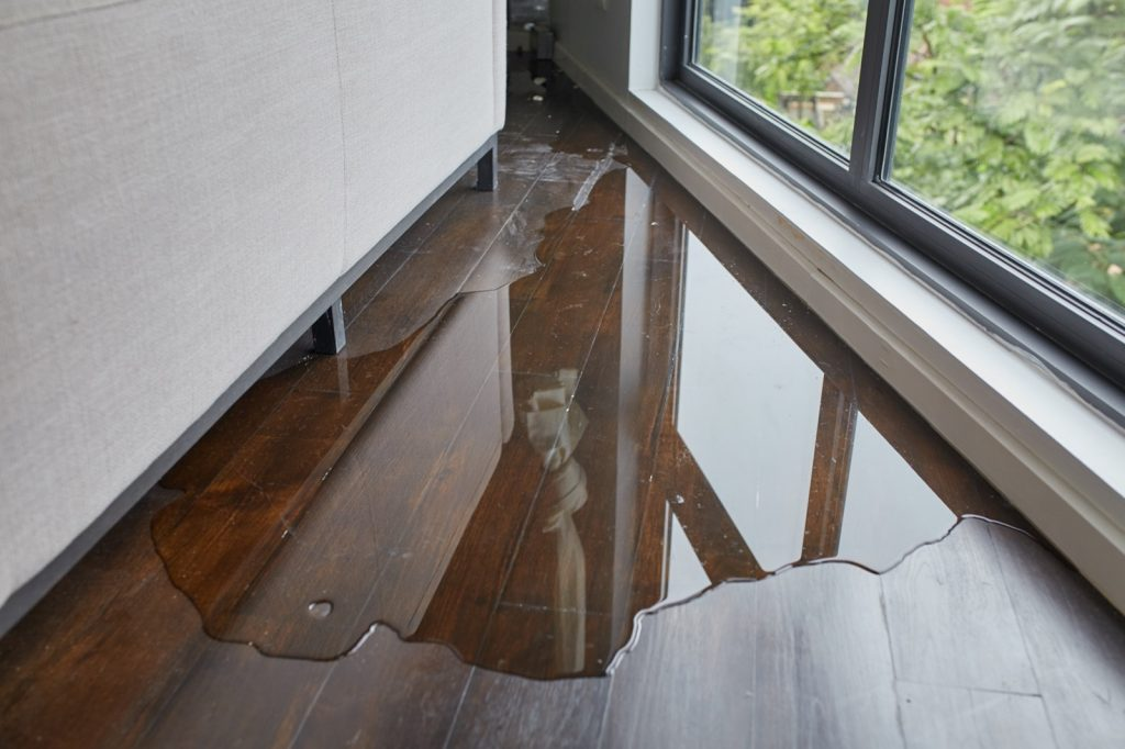 How to Deal with Flood Damage   Piedmont Floors