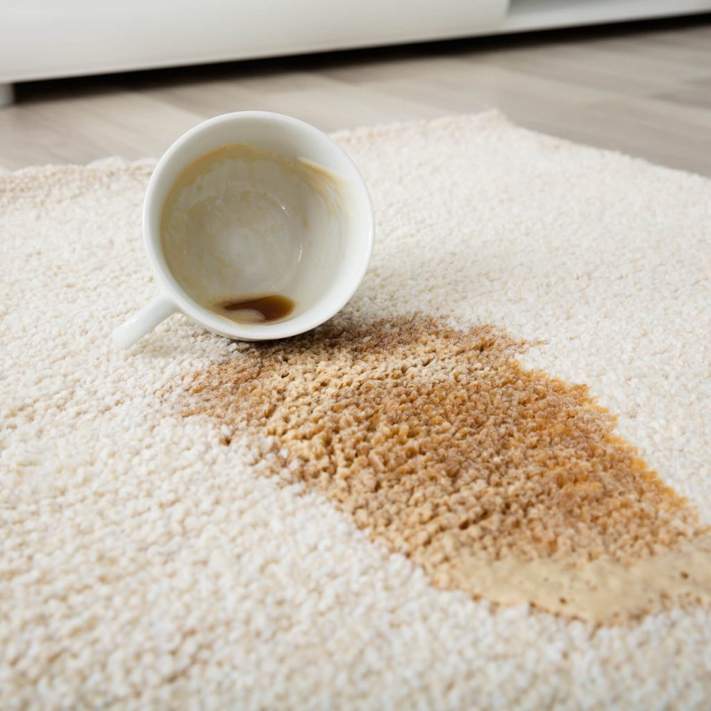 Professional Rug Cleaning | Piedmont Floors